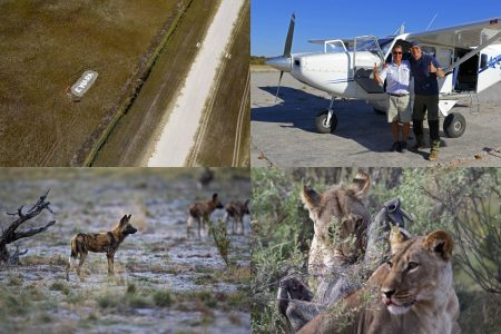 Little Kwara Fotoreise ins Okavangodelta mit Stephan Tuengler