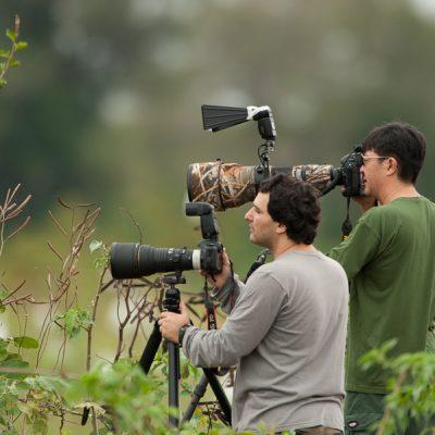 Pantanal Fotografen bei der Arbeit.