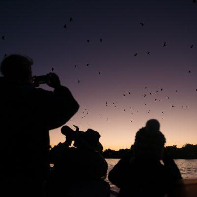 Abends auf dem Boot - Pantanal Reise, Brasilien.