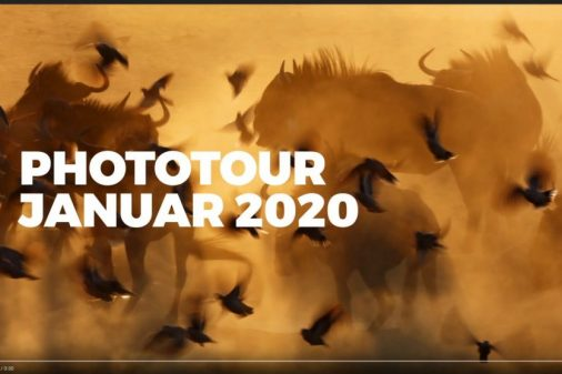 Fotoreise Kalahari, Reise Afrika