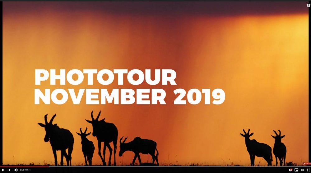 Afrika Fotoreise Kenia, Masai Mara im vom 12.11. bis zum 23.11.2019