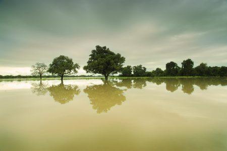 Der Luangwafluss hat seine Höchstwasserstände in der Green Season.